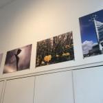Journey Photographs