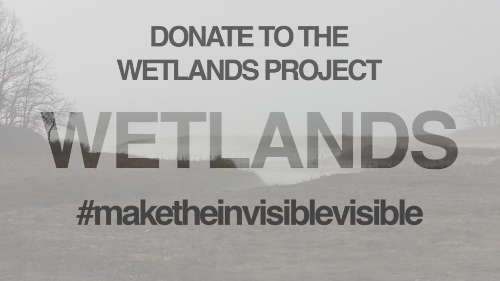 Wetlands Campaign